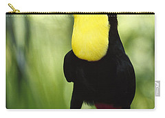 Keel Billed Toucan Calling Carry-all Pouch by Gerry Ellis
