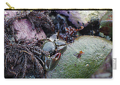Kelp Crab Carry-all Pouch