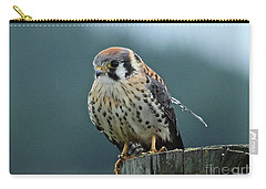Carry-all Pouch featuring the photograph Kestrel Hawk by Ann E Robson