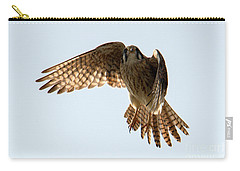 Carry-all Pouch featuring the photograph Kestrel Hover by Mike Dawson