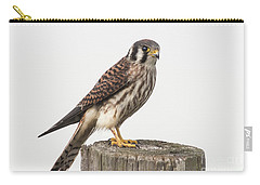Kestrel Portrait Carry-all Pouch by Robert Frederick