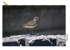 Killdeer Carry-all Pouch by M Images Fine Art Photography and Artwork