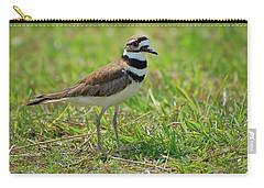 Killdeer Carry-all Pouch by Rich Leighton