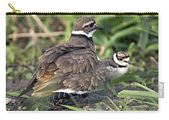 Killdeer With Chicks Carry-all Pouch by Craig Strand