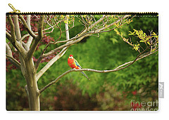King Parrot Carry-all Pouch by Cassandra Buckley