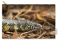 King Snake 1 Carry-all Pouch by Arthur Dodd