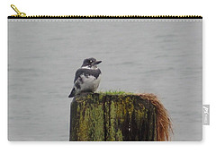 Kingfisher In Bellingham Carry-all Pouch