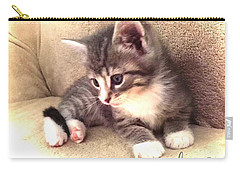 Kitten Deep In Thought Carry-all Pouch