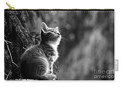 Kitten In The Tree Carry-all Pouch