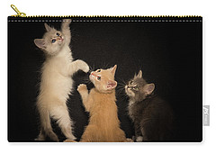 Kitten Just Want To Have Fun Carry-all Pouch