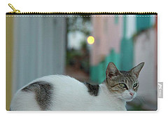 Kitten Reflections Carry-all Pouch