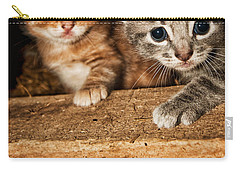 Kittens Carry-all Pouch