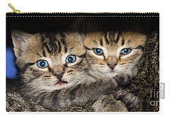 Kittens In The Shadow Carry-all Pouch