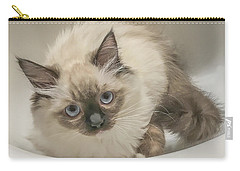 Kitty Blue Eyes Carry-all Pouch