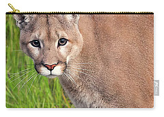 Kitty Look Carry-all Pouch