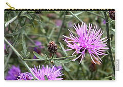 Carry-all Pouch featuring the photograph Knapweed by Danielle R T Haney