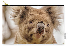 Koala 4 Carry-all Pouch by Werner Padarin