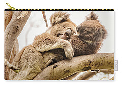 Koala 5 Carry-all Pouch by Werner Padarin