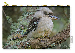 Kookaburra 4 Carry-all Pouch