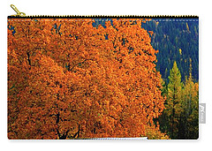Kootenay Autumn Shed Carry-all Pouch