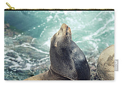La Jolla Carry-all Pouch
