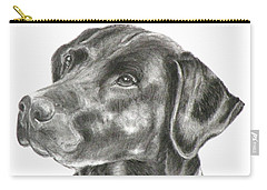 Lab Charcoal Drawing Carry-all Pouch