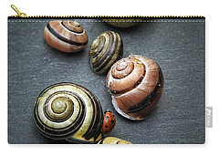 Lady Bug And Snail Shells 1 Carry-all Pouch by Karen Stahlros