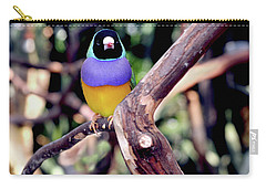 Lady Gouldian Finch Carry-all Pouch