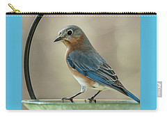 Carry-all Pouch featuring the photograph Ladybluebird Of Happiness by Jim Moore