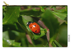 Ladybug Carry-all Pouch by Carol Groenen