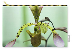 Carry-all Pouch featuring the photograph Lady's Slipper Orchid by Cristina Stefan