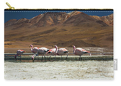 Laguna Colorada, Andes, Bolivia Carry-all Pouch