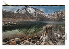 Lake Convict Tree Stump Carry-all Pouch by Ralph Vazquez