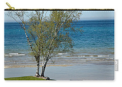 Carry-all Pouch featuring the photograph Lake Michigan Birch Tree Bench by LeeAnn McLaneGoetz McLaneGoetzStudioLLCcom
