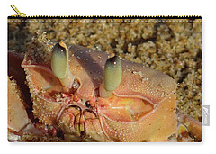 Lamu Island - Crab - Close Up 1 Carry-all Pouch by Exploramum Exploramum