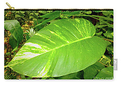 Carry-all Pouch featuring the photograph Large Leaf by Francesca Mackenney