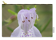 Largeflower False Rosemary #1 Carry-all Pouch