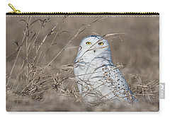 Last Year Of The Snowy Owls... Carry-all Pouch