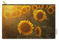 Late Afternoon Golden Glow Carry-all Pouch