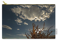 Late Afternoon In The Bristlecone Forest Carry-all Pouch