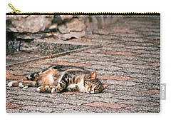 Carry-all Pouch featuring the photograph Lazy Cat    by Silvia Ganora