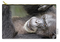 Lazy Chimp - Lowry Park Zoo Carry-all Pouch