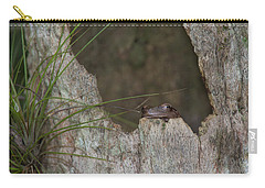 Lazy Tree Frog Carry-all Pouch