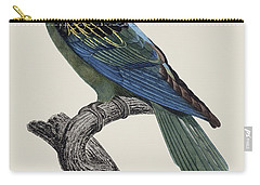 Le Perroquet A Bec Couleur De Sang / Great-billed Parrot - Restored 19thc. Illustration By Barraband Carry-all Pouch by Jose Elias - Sofia Pereira