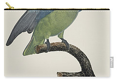 Le Perroquet Geoffroy Male / Red Cheeked Parrot - Restored 19th C. By Barraband Carry-all Pouch by Jose Elias - Sofia Pereira