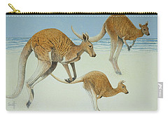 Kangaroo Carry-All Pouches
