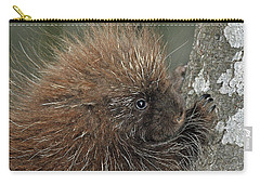 Carry-all Pouch featuring the photograph Learning To Climb by Glenn Gordon
