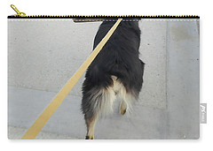 Leashed Carry-all Pouch