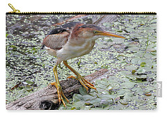 Carry-all Pouch featuring the photograph Least Bittern by Doris Potter