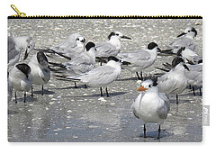 Least Terns Carry-all Pouch